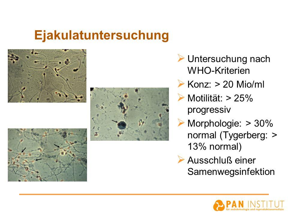 Ejakulatuntersuchung  Untersuchung nach WHO-Kriterien  Konz: > 20 Mio/ml  Motilität: > 25% progressiv  Morphologie: > 30% normal (Tygerberg: > 13%