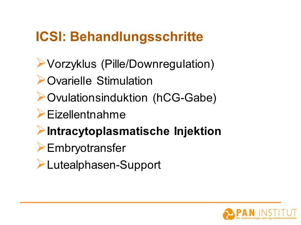 ICSI: Behandlungsschritte  Vorzyklus (Pille/Downregulation)  Ovarielle Stimulation  Ovulationsinduktion (hCG-Gabe)  Eizellentnahme  Intracytoplas