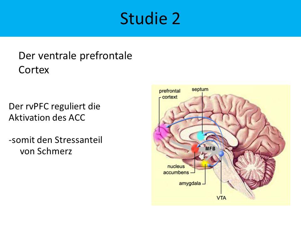 Der rvPFC reguliert die Aktivation des ACC -somit den Stressanteil von Schmerz Der ventrale prefrontale Cortex Studie 2