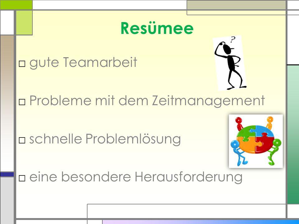 Resümee □gute Teamarbeit □Probleme mit dem Zeitmanagement □schnelle Problemlösung □eine besondere Herausforderung