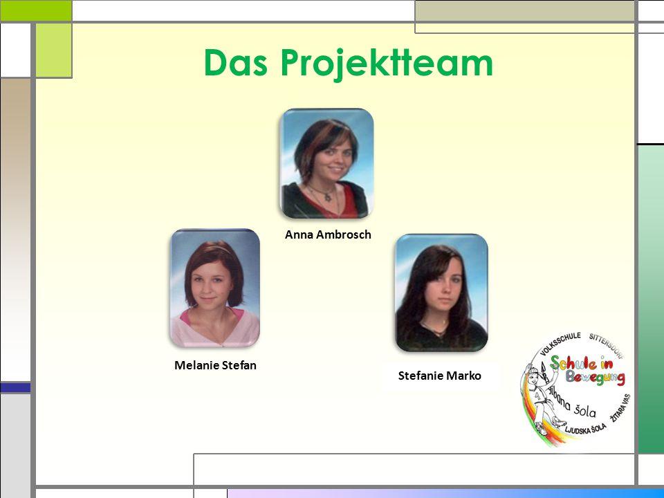 Das Projektteam Anna Ambrosch Melanie Stefan Stefanie Marko