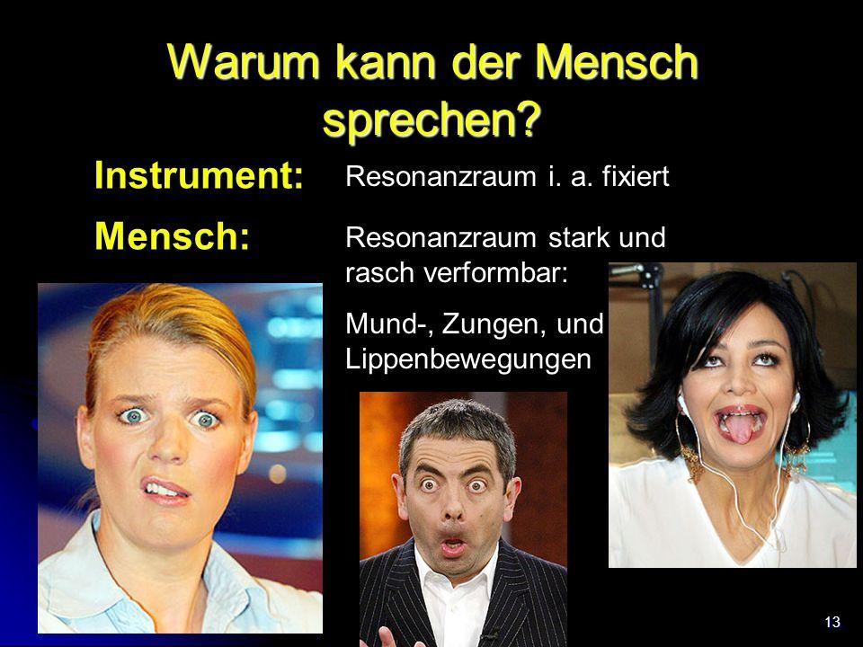 13 Warum kann der Mensch sprechen? Instrument: Mensch: Resonanzraum i. a. fixiert Resonanzraum stark und rasch verformbar: Mund-, Zungen, und Lippenbe