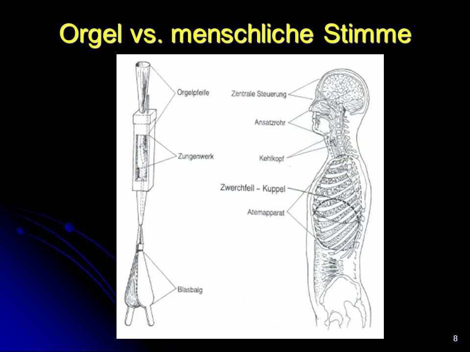 8 Orgel vs. menschliche Stimme