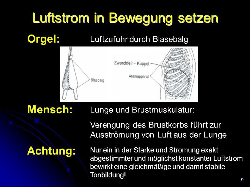 9 Luftstrom in Bewegung setzen Orgel: Mensch: Lunge und Brustmuskulatur: Verengung des Brustkorbs führt zur Ausströmung von Luft aus der Lunge Luftzuf