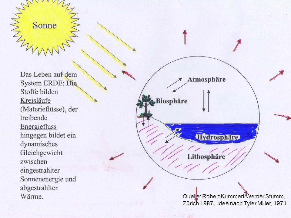 Quecksilber(II)verbindungen bilden mit vielen in Gewässern vorkommenden Anionen stabile Komplexe, dadurch kann die Wasserlöslichkeit stark erhöht werden.