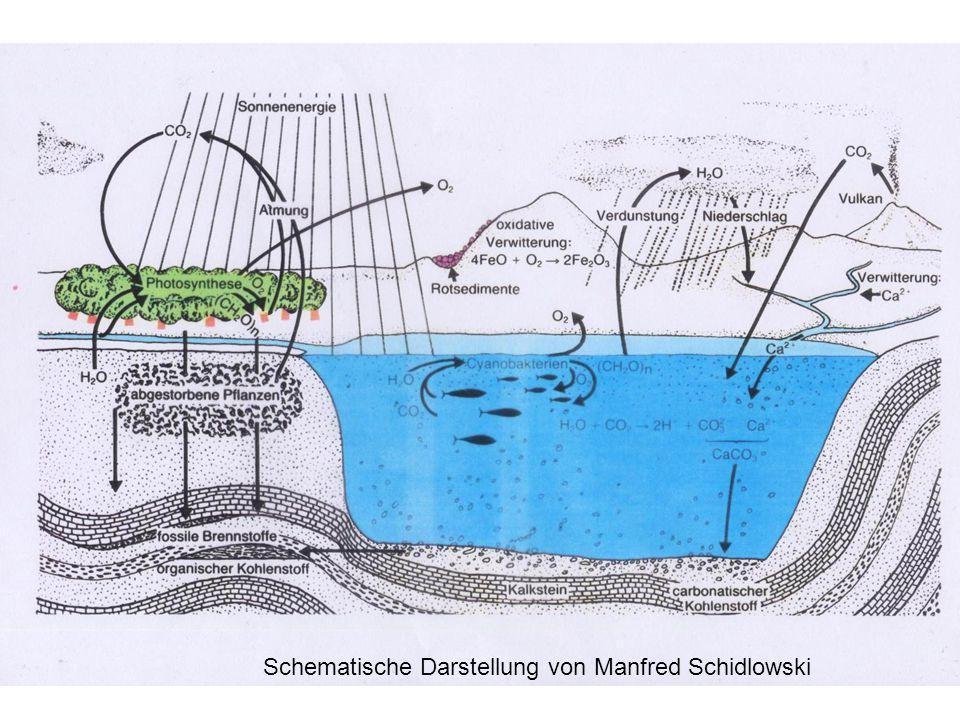 Schematische Darstellung von Manfred Schidlowski