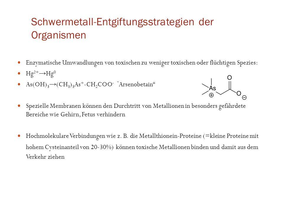 Schwermetall-Entgiftungsstrategien der Organismen Enzymatische Umwandlungen von toxischen zu weniger toxischen oder flüchtigen Spezies: Hg 2+ → Hg 0 A