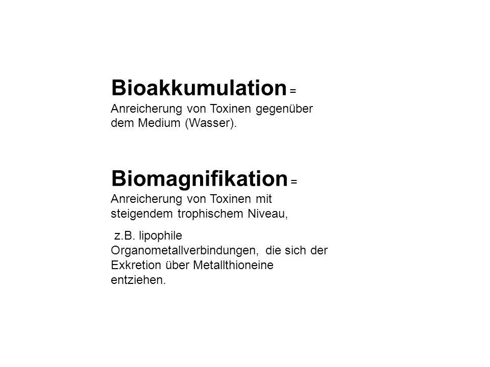 Bioakkumulation = Anreicherung von Toxinen gegenüber dem Medium (Wasser). Biomagnifikation = Anreicherung von Toxinen mit steigendem trophischem Nivea