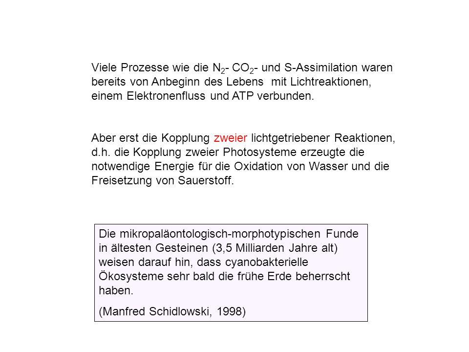 Verwitterung von Calcit, offenes System (bei 101 325 Pa = Normaldruck) 0.038% v/v CO 2 in der Atmosphäre pH=8.3 [Ca 2+ ] = 5x10 -4 mol/L entspricht 2.8°dH 3% v/v CO 2 in der Bodenluft pH = 7.02 [Ca 2+ ] = 2.8x10 -3 mol/L entspricht 15.7°dH