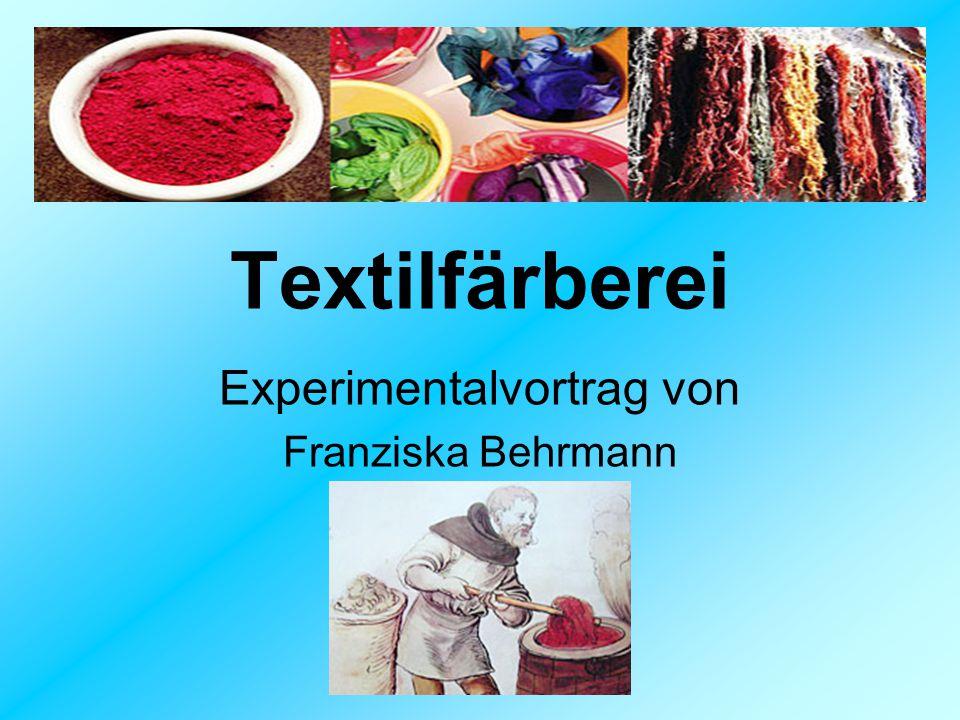 Textilfärberei Experimentalvortrag von Franziska Behrmann