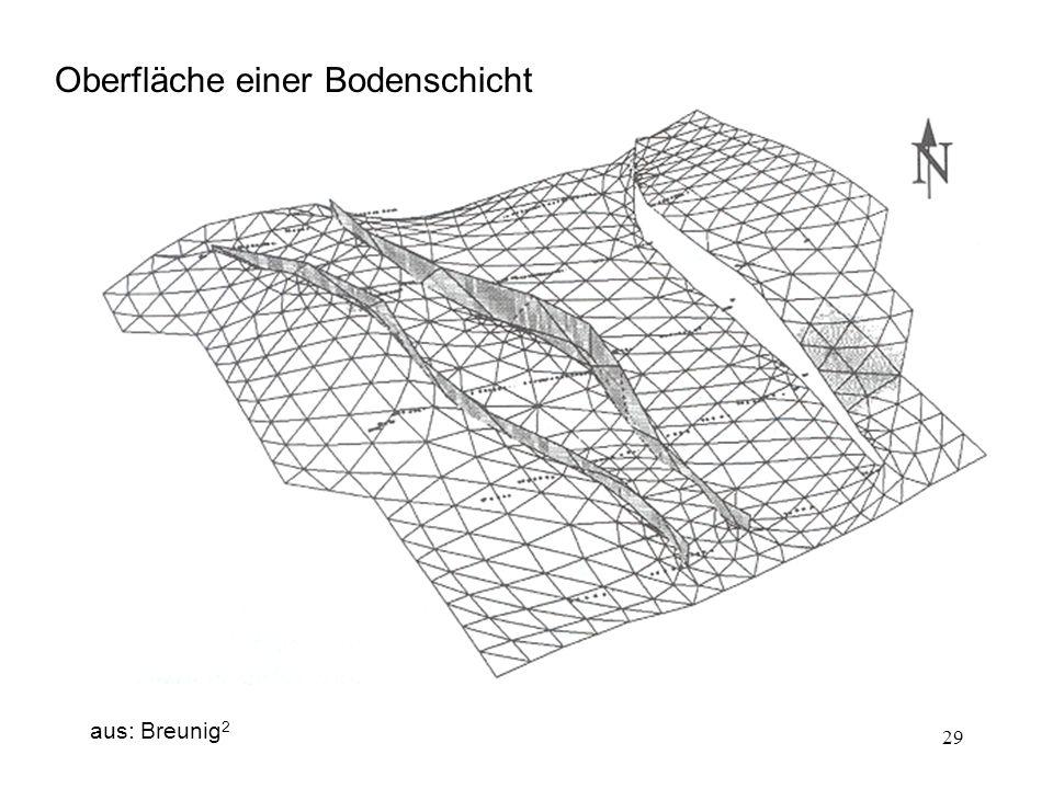 29 Oberfläche einer Bodenschicht aus: Breunig 2