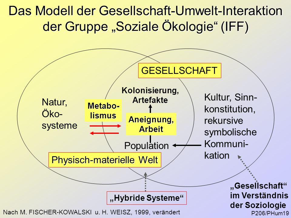 """Das Modell der Gesellschaft-Umwelt-Interaktion der Gruppe """"Soziale Ökologie"""" (IFF) Kultur, Sinn- konstitution, rekursive symbolische Kommuni- kation N"""