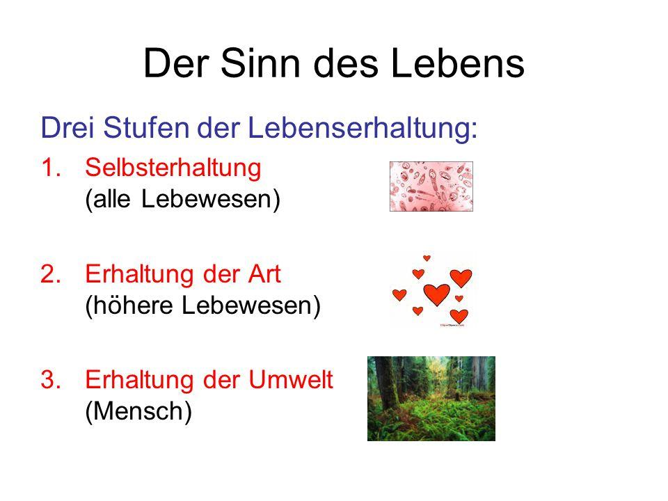 Der Sinn des Lebens Drei Stufen der Lebenserhaltung: 1.Selbsterhaltung (alle Lebewesen) 2.Erhaltung der Art (höhere Lebewesen) 3.Erhaltung der Umwelt (Mensch)