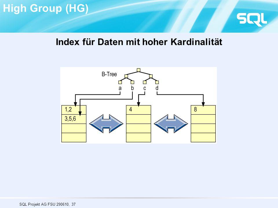 SQL Projekt AG FSU 290610, 37 High Group (HG) Index für Daten mit hoher Kardinalität