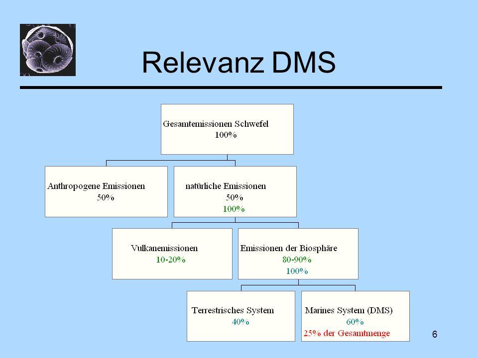 Diskussion6 Relevanz DMS
