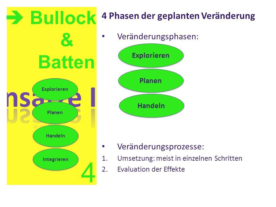 4 Phasen der geplanten Veränderung Veränderungsphasen: Veränderungsprozesse: 1.Umsetzung: meist in einzelnen Schritten 2.Evaluation der Effekte  Bull