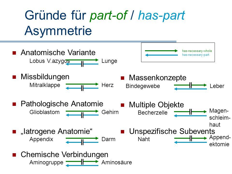 Gründe für part-of / has-part Asymmetrie has-necessary-whole has-necessary-part Missbildungen MitralklappeHerz Pathologische Anatomie GlioblastomGehir