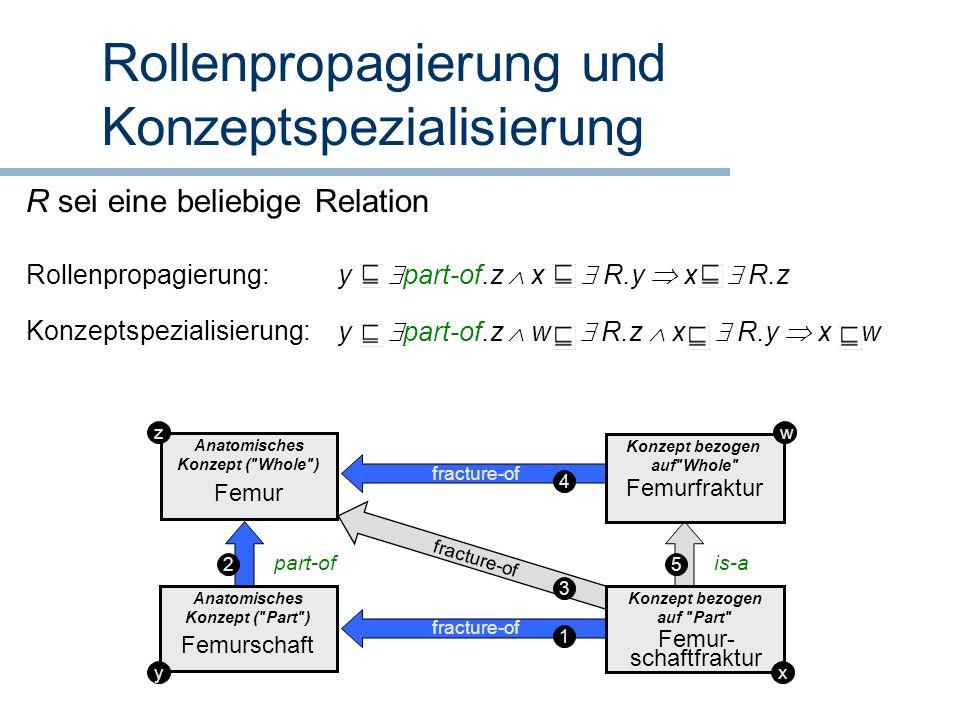 Rollenpropagierung und Konzeptspezialisierung Anatomisches Konzept (