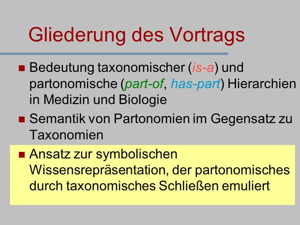 Bedeutung taxonomischer (is-a) und partonomische (part-of, has-part) Hierarchien in Medizin und Biologie Semantik von Partonomien im Gegensatz zu Taxo