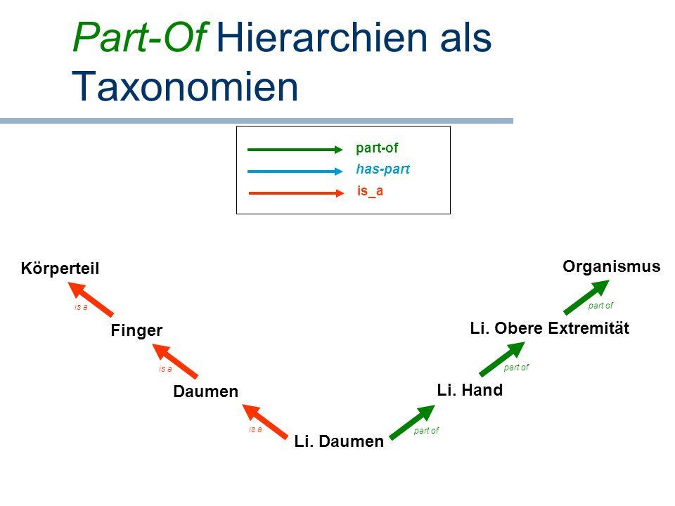 Part-Of Hierarchien als Taxonomien Li. Daumen Daumen Finger Li. Hand Li. Obere Extremität Organismus Körperteil is a part of part-of has-part is_a