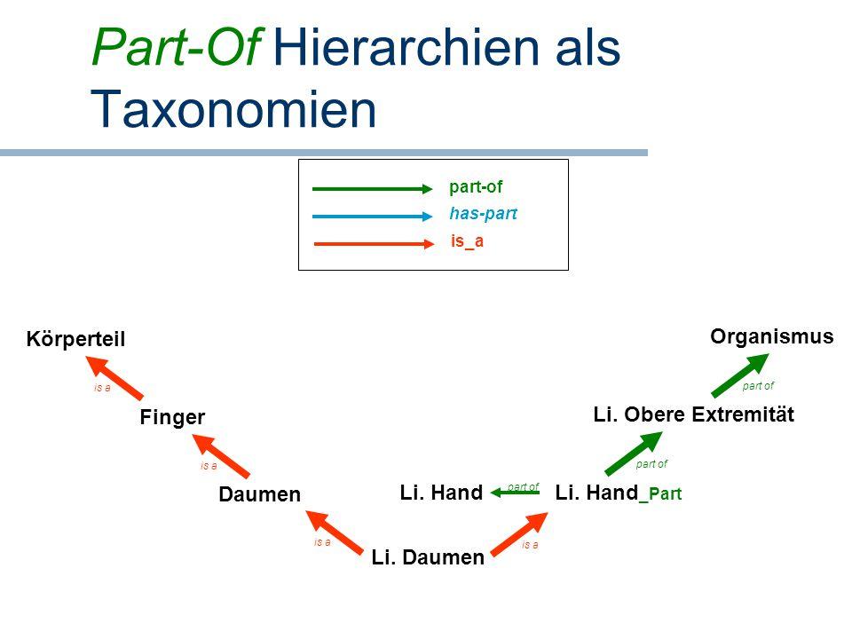Part-Of Hierarchien als Taxonomien Li. Daumen Daumen Finger Li. Hand _Part Körperteil is a part of is a Li. Hand part of Li. Obere Extremität Organism