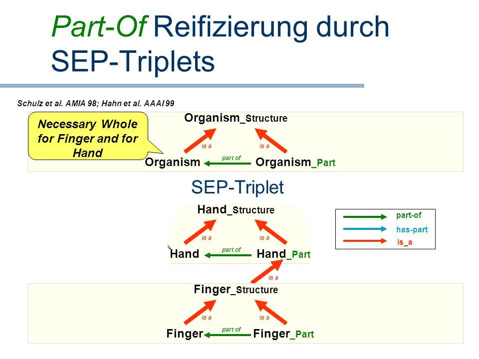 Part-Of Reifizierung durch SEP-Triplets Hand _Part is a Hand part of Hand _Structure is a S (