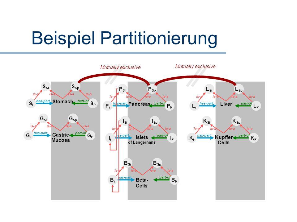 Beispiel Partitionierung BiBi BPBP Beta- Cells B Si B Sp has-partpart-of is-a IiIi IPIP Islets of Langerhans I Si I Sp has-partpart-of is-a PiPiP Panc