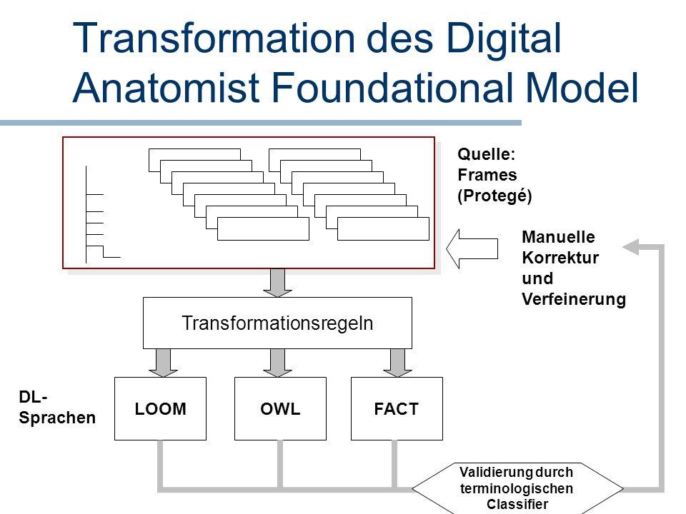 Transformation des Digital Anatomist Foundational Model Quelle: Frames (Protegé) Manuelle Korrektur und Verfeinerung Transformationsregeln LOOMOWLFACT
