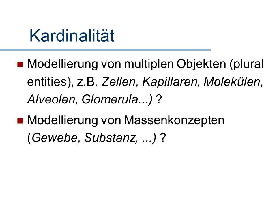 Kardinalität Modellierung von multiplen Objekten (plural entities), z.B. Zellen, Kapillaren, Molekülen, Alveolen, Glomerula...) ? Modellierung von Mas