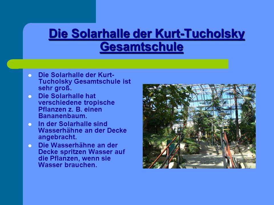 Die Solarhalle der Kurt-Tucholsky Gesamtschule Die Solarhalle der Kurt- Tucholsky Gesamtschule ist sehr groß. Die Solarhalle hat verschiedene tropisch
