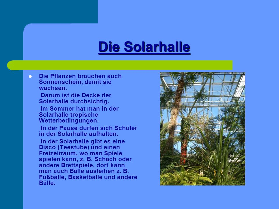 The solar hall There are different tropical plants e.g.