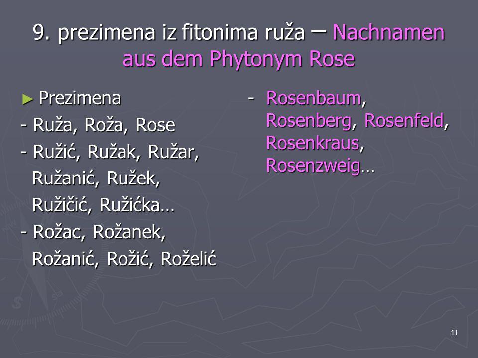 11 9. prezimena iz fitonima ruža – Nachnamen aus dem Phytonym Rose ► Prezimena - Ruža, Roža, Rose - Ružić, Ružak, Ružar, Ružanić, Ružek, Ružanić, Ruže