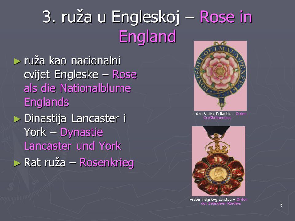 5 3. ruža u Engleskoj – Rose in England ► ruža kao nacionalni cvijet Engleske – Rose als die Nationalblume Englands ► Dinastija Lancaster i York – Dyn