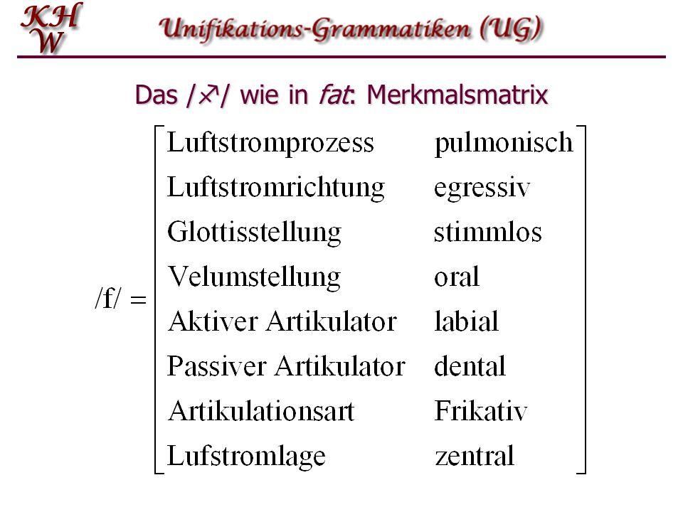Das / f / wie in fat: Merkmalsmatrix