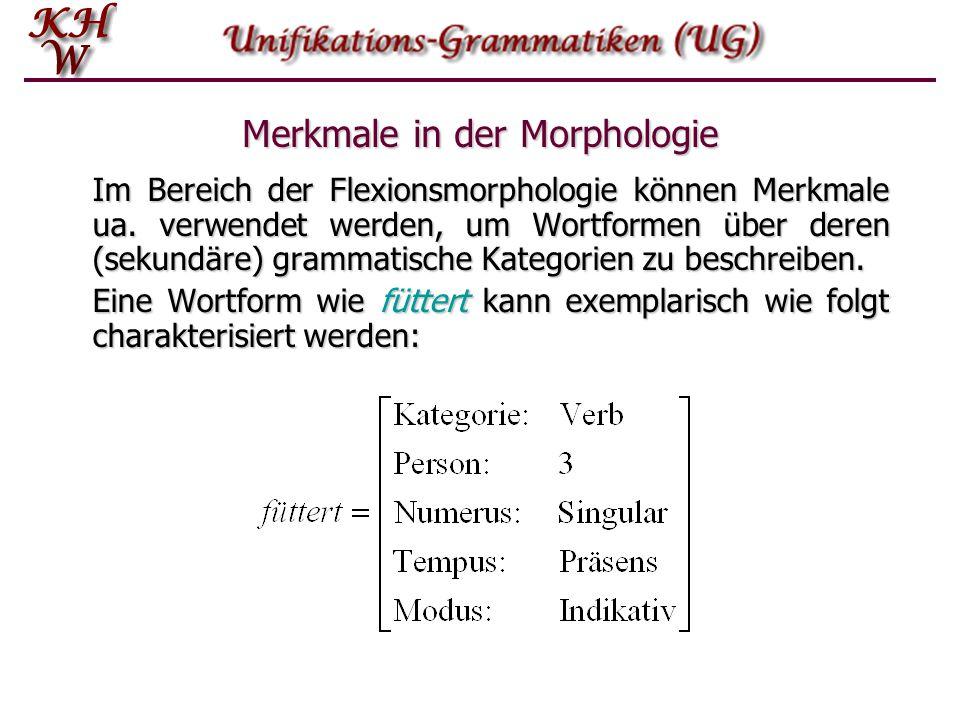 Merkmale in der Morphologie Im Bereich der Flexionsmorphologie können Merkmale ua. verwendet werden, um Wortformen über deren (sekundäre) grammatische