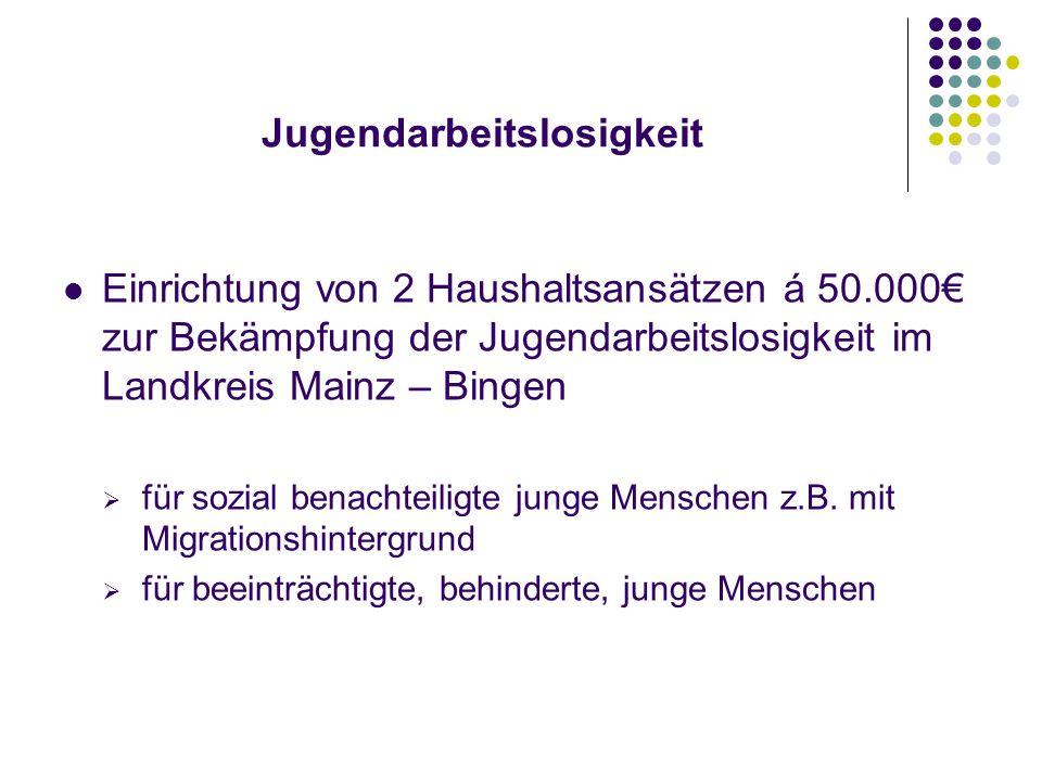 Jugendarbeitslosigkeit Einrichtung von 2 Haushaltsansätzen á 50.000€ zur Bekämpfung der Jugendarbeitslosigkeit im Landkreis Mainz – Bingen  für sozial benachteiligte junge Menschen z.B.