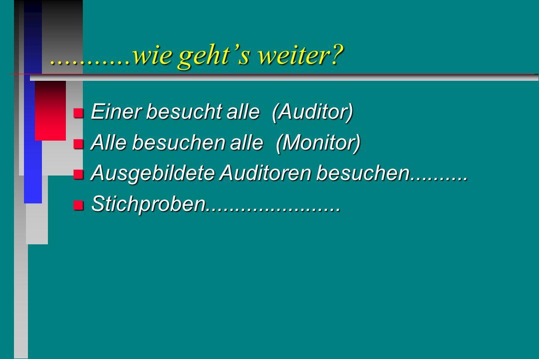 ...........wie geht's weiter? n Einer besucht alle (Auditor) n Alle besuchen alle (Monitor) n Ausgebildete Auditoren besuchen.......... n Stichproben.