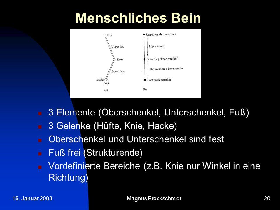 15. Januar 2003Magnus Brockschmidt20 Menschliches Bein 3 Elemente (Oberschenkel, Unterschenkel, Fuß) 3 Gelenke (Hüfte, Knie, Hacke) Oberschenkel und U