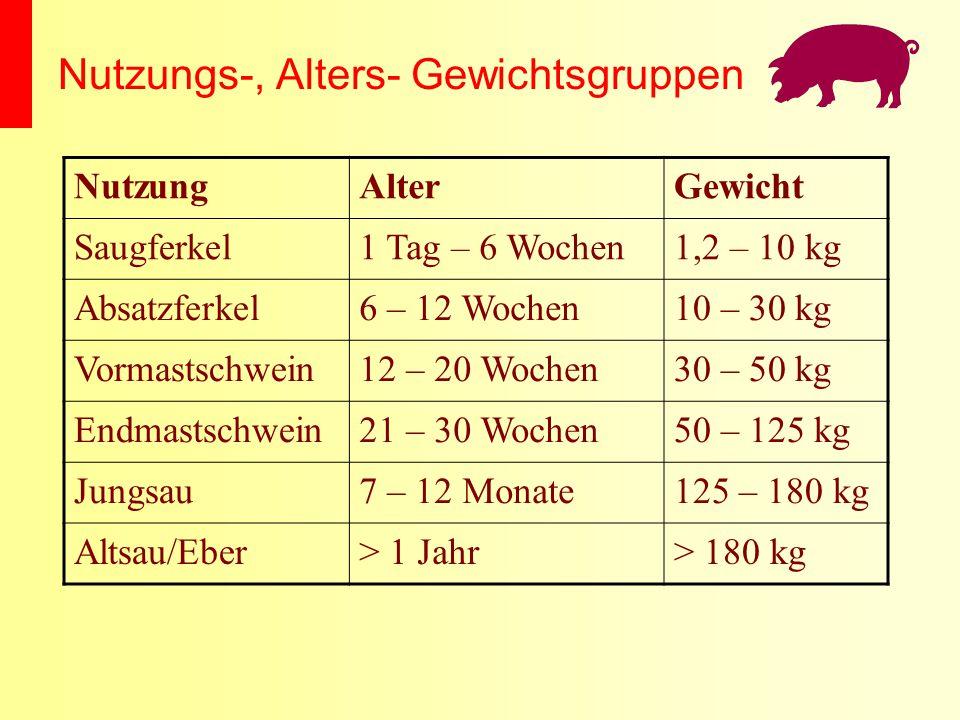 Nutzungs-, Alters- Gewichtsgruppen NutzungAlterGewicht Saugferkel1 Tag – 6 Wochen1,2 – 10 kg Absatzferkel6 – 12 Wochen10 – 30 kg Vormastschwein12 – 20