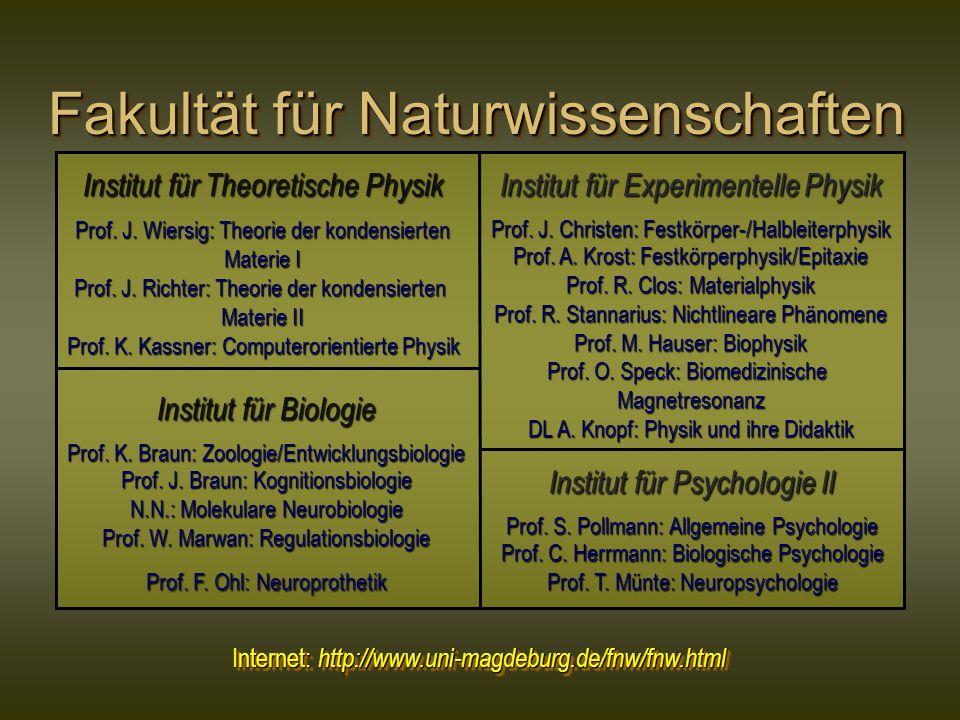 Fakultät für Naturwissenschaften Institut für Theoretische Physik Prof.