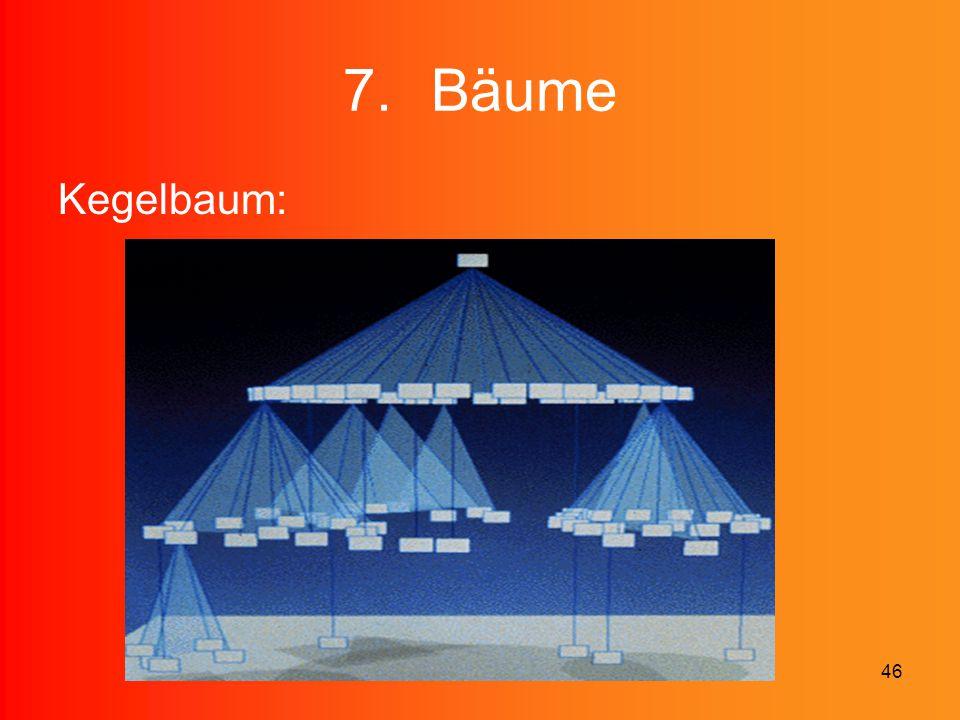 46 7.Bäume Kegelbaum: