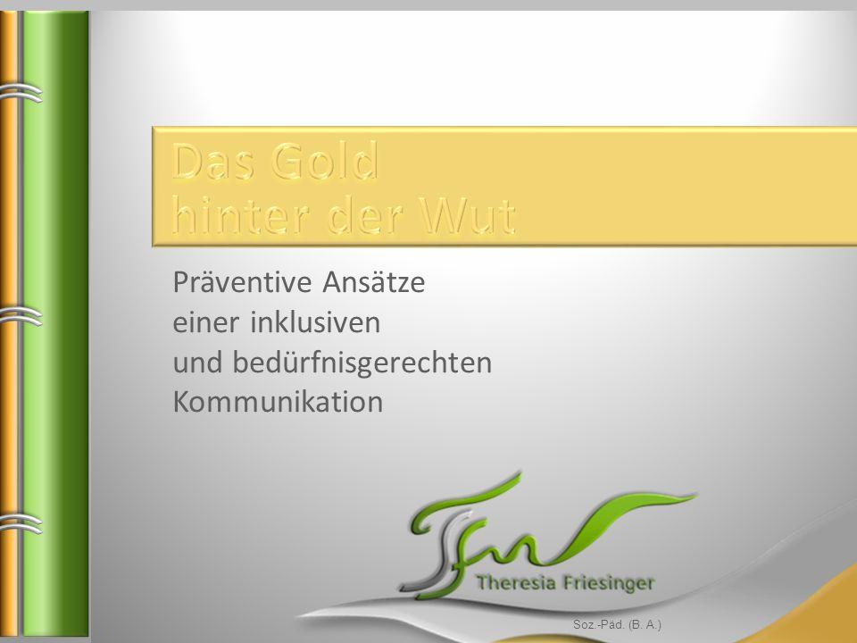 Soz.-Päd. (B. A.) Präventive Ansätze einer inklusiven und bedürfnisgerechten Kommunikation