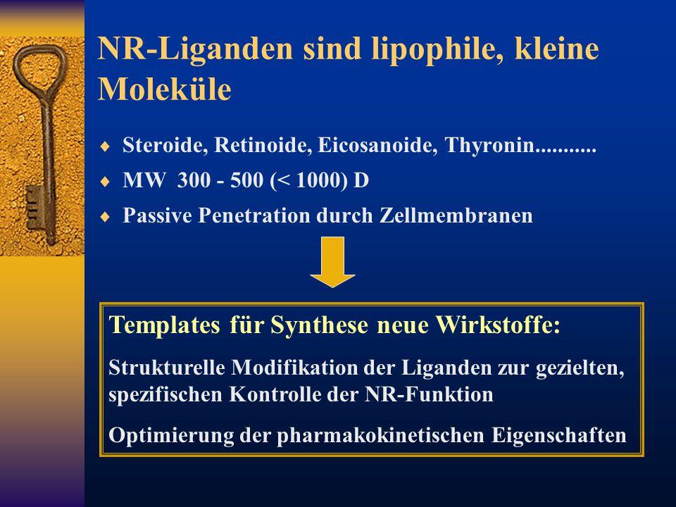 NR-Liganden sind lipophile, kleine Moleküle  Steroide, Retinoide, Eicosanoide, Thyronin...........  MW 300 - 500 (< 1000) D  Passive Penetration du