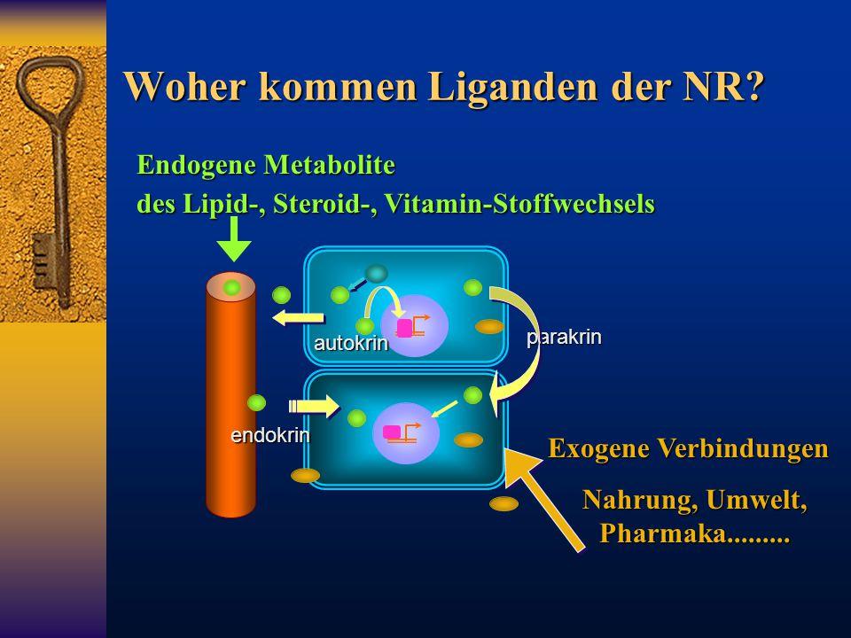 Woher kommen Liganden der NR? Endogene Metabolite des Lipid-, Steroid-, Vitamin-Stoffwechsels Exogene Verbindungen Nahrung, Umwelt, Pharmaka.........