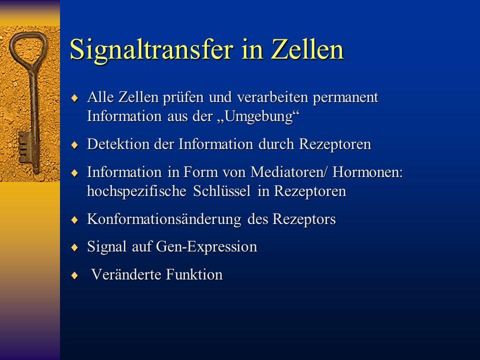 """Signaltransfer in Zellen  Alle Zellen prüfen und verarbeiten permanent Information aus der """"Umgebung""""  Detektion der Information durch Rezeptoren """