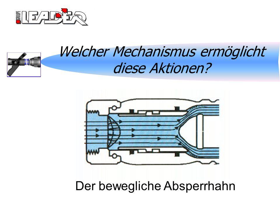 Welcher Mechanismus ermöglicht diese Aktionen? Der bewegliche Absperrhahn
