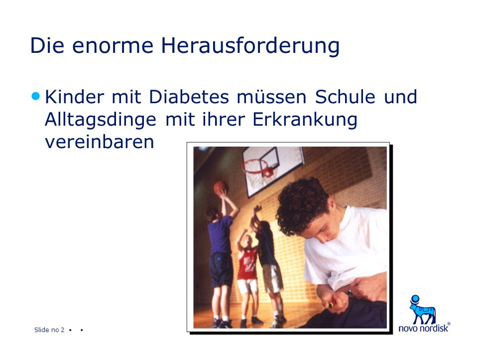 Slide no 13 Das Projekt Diabetes & Schule Stufe 1 - SchulärztIn Veranstaltungen mit den SchulärztInnen auf Landesebene Inhalte Diabetes in der Schule – Probleme und Lösungen Geräte zum Messen und Injizieren – Theorie und Praxis Vortragende Diabetologe aus der Region Fachleute für BZ Messgeräte und Insulinpens