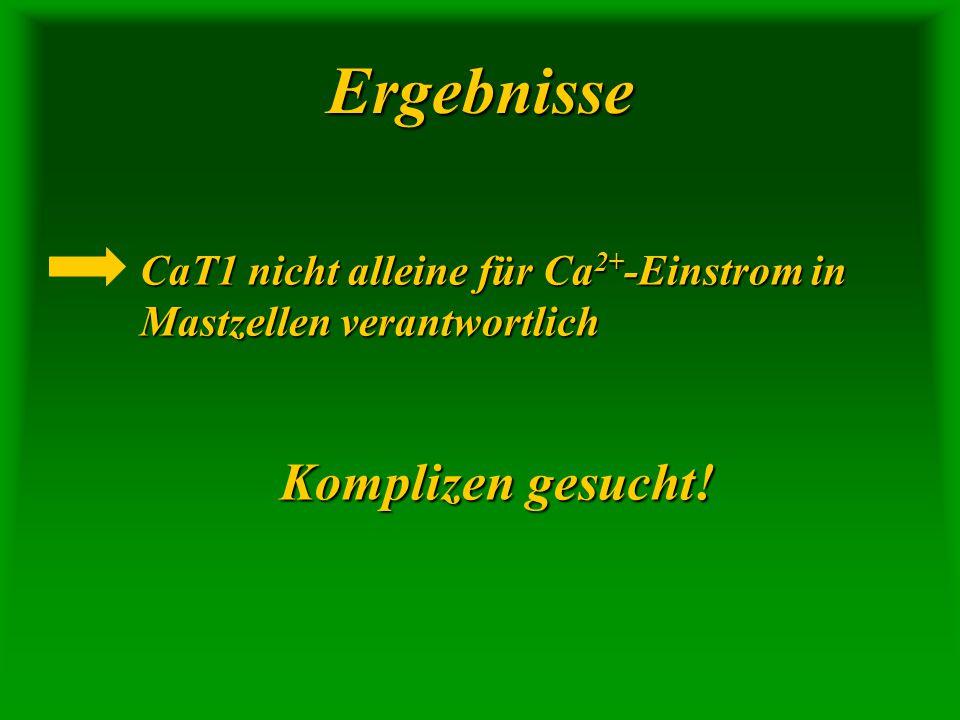 Ergebnisse CaT1 nicht alleine für Ca 2+ -Einstrom in Mastzellen verantwortlich Komplizen gesucht!