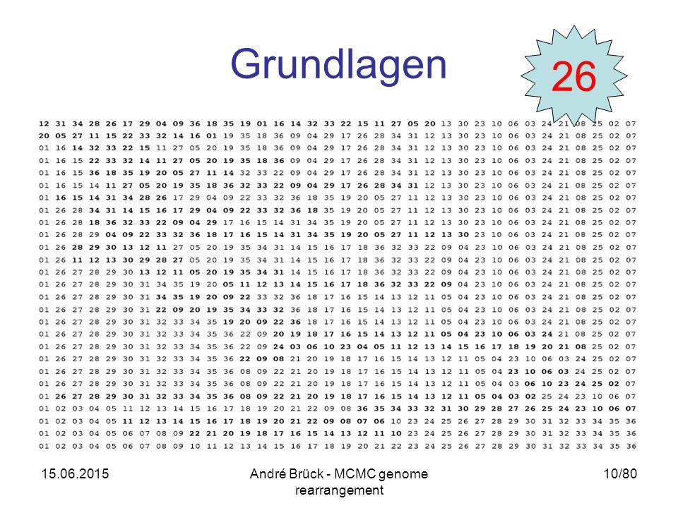 15.06.2015André Brück - MCMC genome rearrangement 10/80 Grundlagen 26