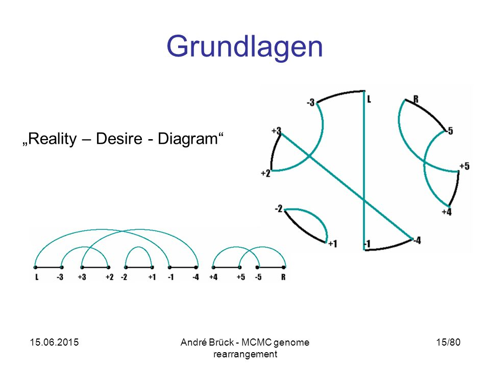 "15.06.2015André Brück - MCMC genome rearrangement 15/80 Grundlagen ""Reality – Desire - Diagram"